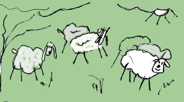 mouton001.jpg