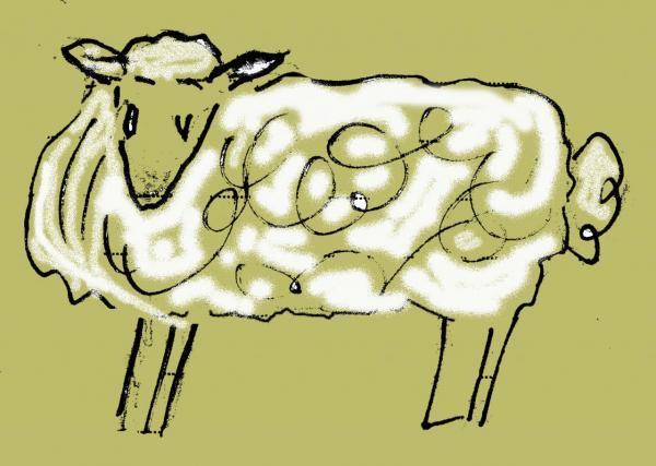 mouton002.jpg