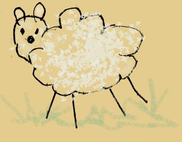 mouton004.jpg