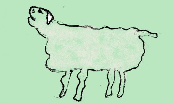 mouton005.jpg